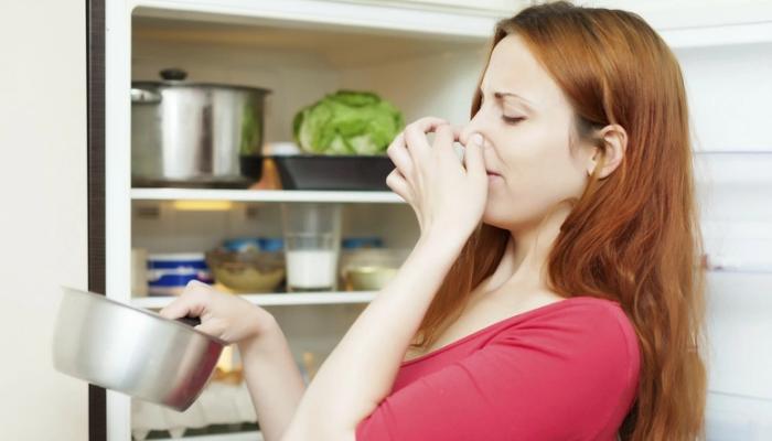 cómo quitar el mal olor de la nevera no frost