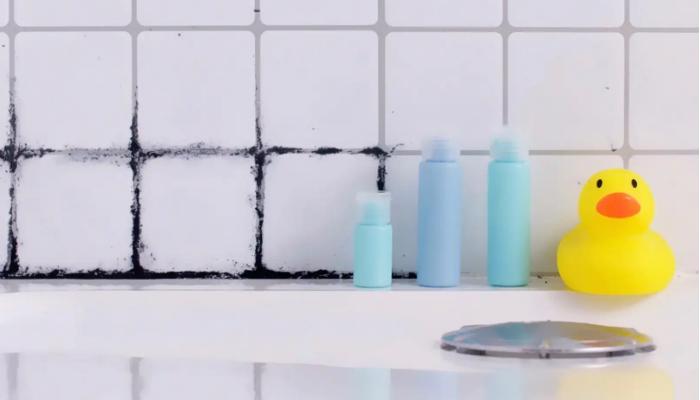 Cómo quitar el moho de la ducha