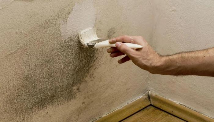 Reparar la pared