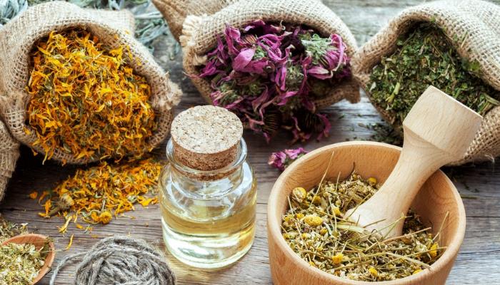 Trucos con plantas medicinales para aliviar el dolor lumbar y relajarse