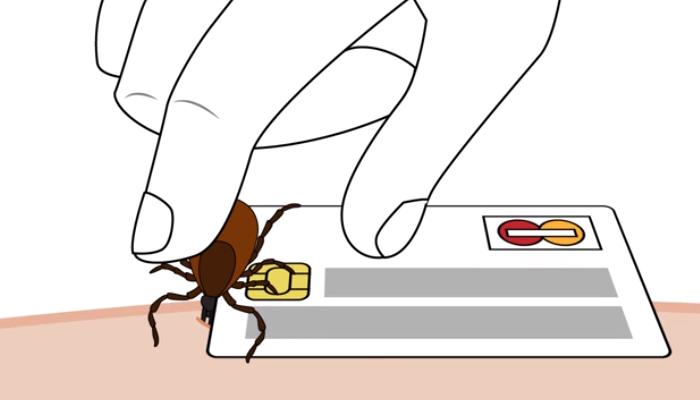 Tarjetas de débito o crédito para quita una garrapata a una persona: