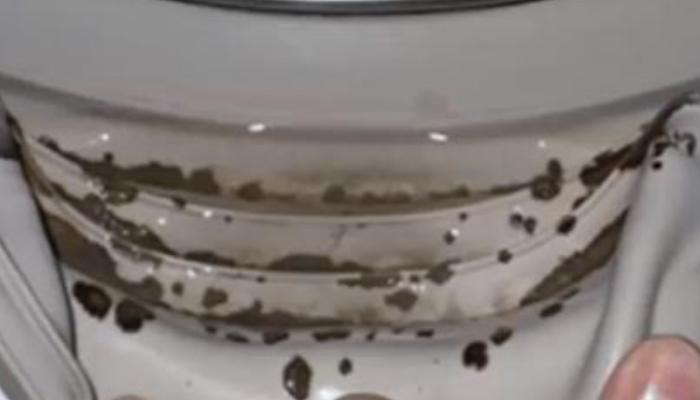 Cómo qutitar el mal lor de la lavadora con limpieza para evitar el moho
