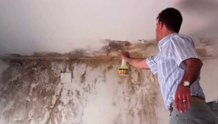 Cómo quitar la humedad de la casa