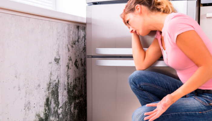 Como quitar la humedad de la casa