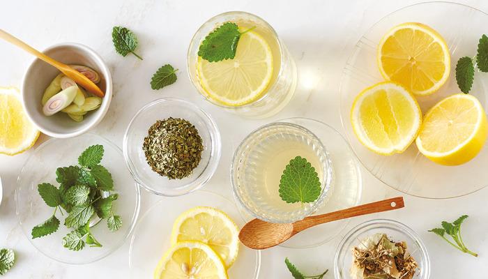 Potente gargarismo de plantas para disminuir los síntomas de el resfriado