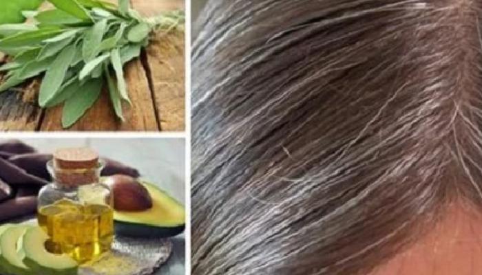 Con aguacate, aparte de desvanecer las canas tu cabello estará hidratado