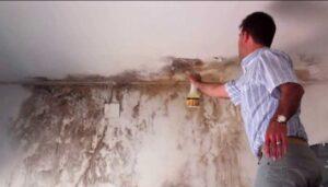 cómo quitar la humedad de la pared - con remedios infalibles